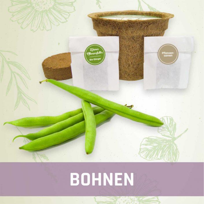 Produktfoto Bohnen Gemüse Kleines Beet