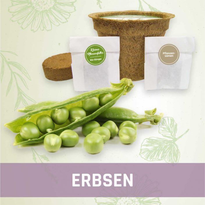 Produktfoto Erbsen Gemüse Kleines Beet