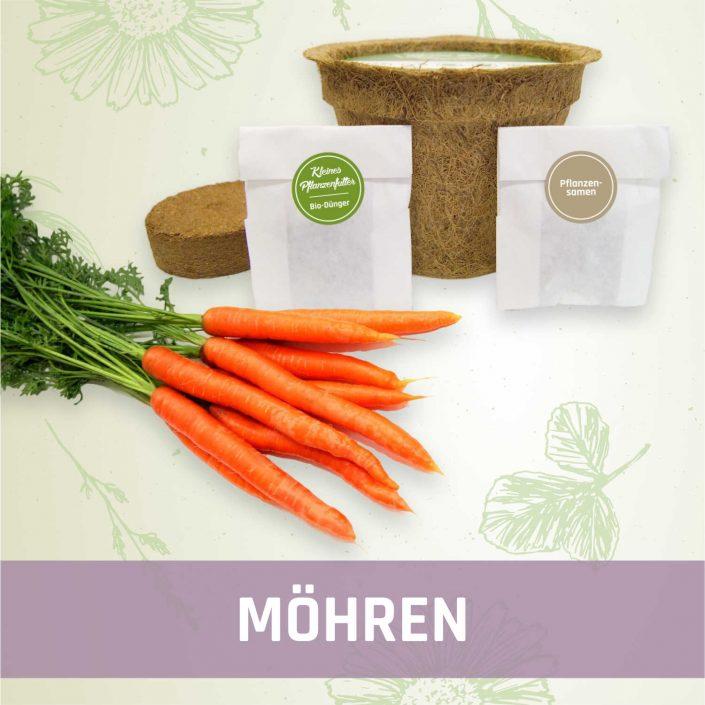 Produktfoto Möhren Gemüse Kleines Beet