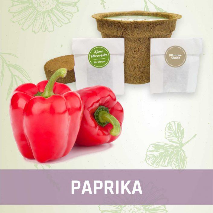 Produktfoto Paprika Gemüse Kleines Beet