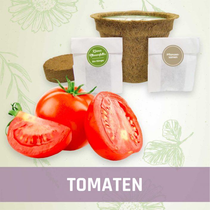 Produktfoto Tomaten Gemüse Kleines Beet
