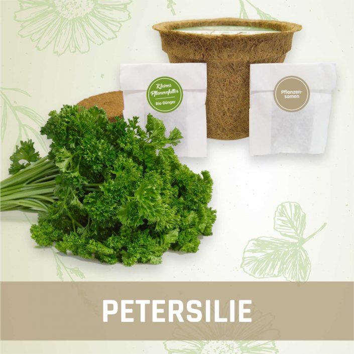 Produktfoto Petersilie Kräuter Kleines Beet