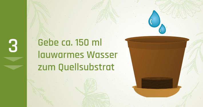 2. Gebe ca. 150 ml lauwarmes Wasser schluckweise zum Quellsubstrat